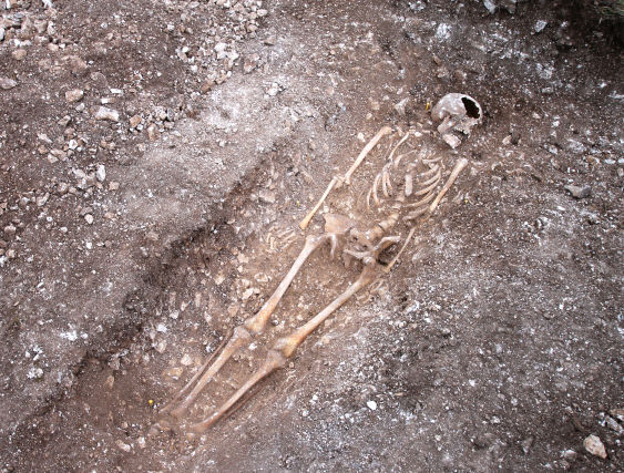 Skeleton of man who had his throat slit by Anglo Saxon executioners 1,000 years ago is uncovered during excavations for a new wind farm.