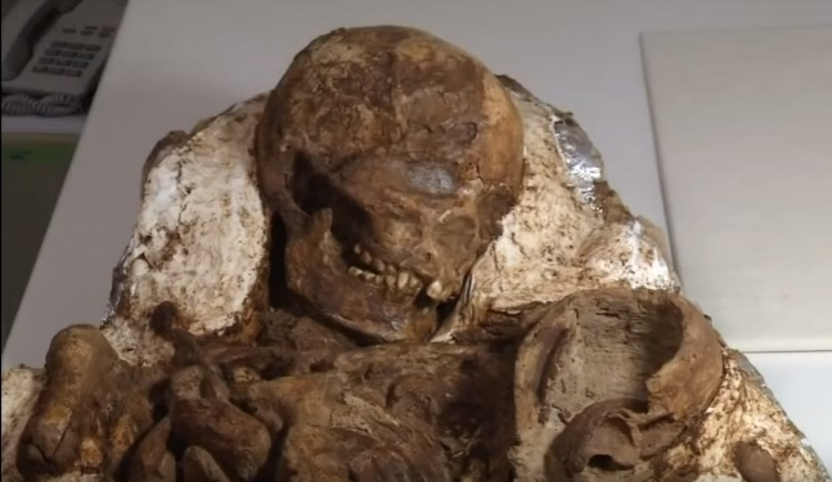 Incredible 4,800 year old fossil of a mother cradling and looking lovingly down at her baby found in Taiwan