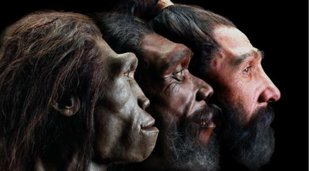 How white skin evolved in Europeans: Pale complexions only spread in the region 8,000 years ago, study claims