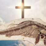 Christians Hid a Dinosaur Fossil 170 Years Ago Because It Contradicted the Bible